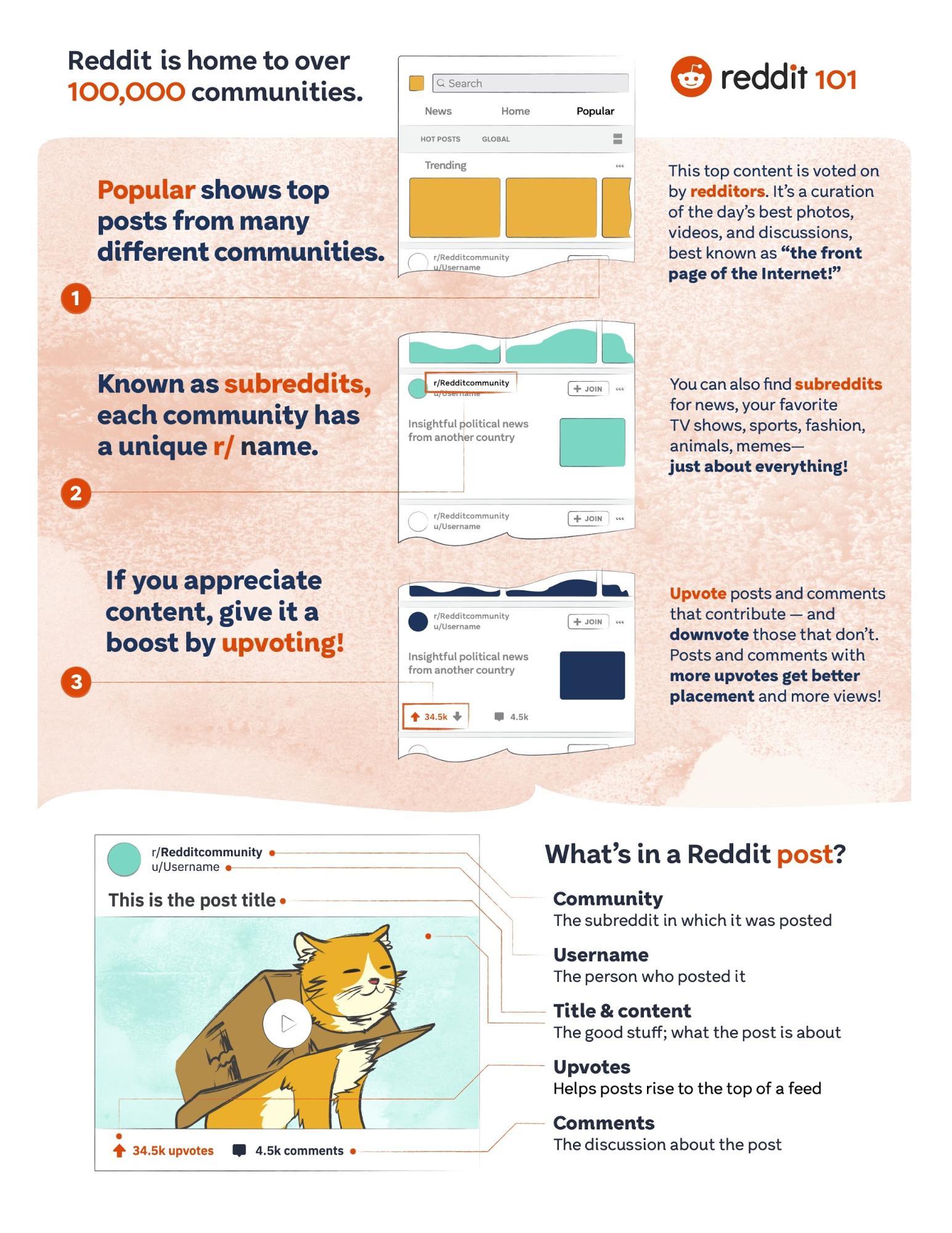 Reddit 101 Brand Guidelines Example