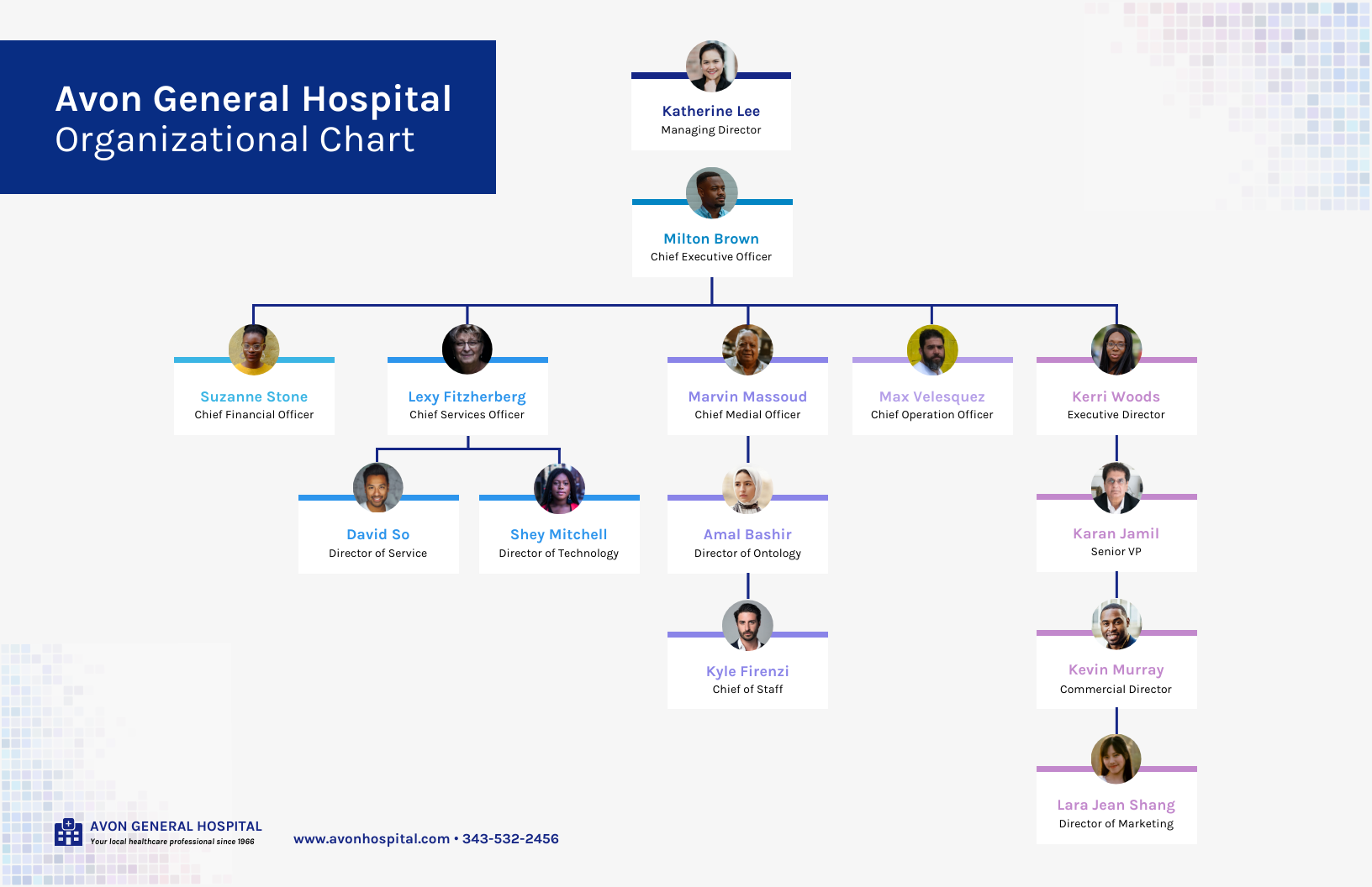 Organizational Chart Example Healthcare Template 2