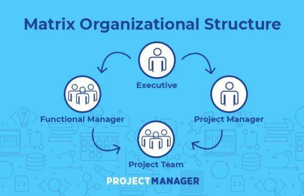 Organizational Chart Examples Blue Matrix Organizational Chart