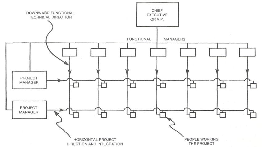 Organizational Chart Examples Matrix Organizational Chart