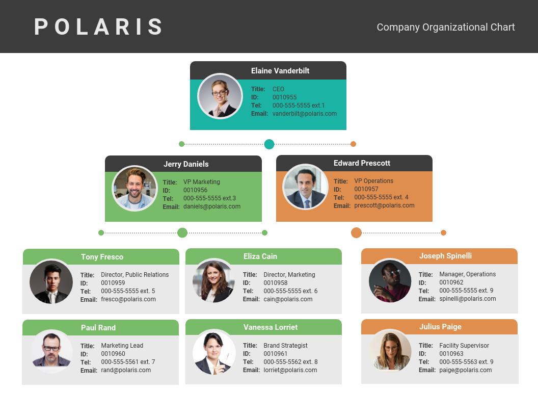 Organizational Chart Examples White Organizational Chart Template