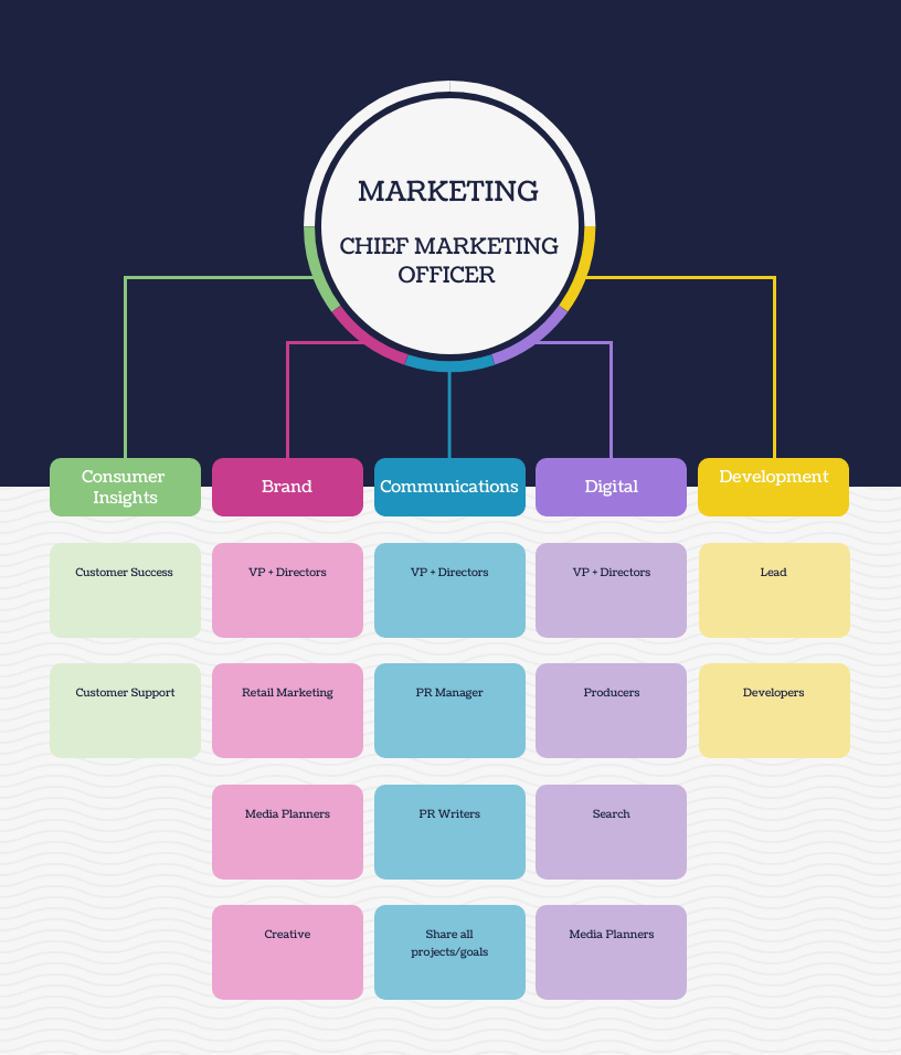 Traditional Marketing Organizational Structure Template Organizational Chart Examples
