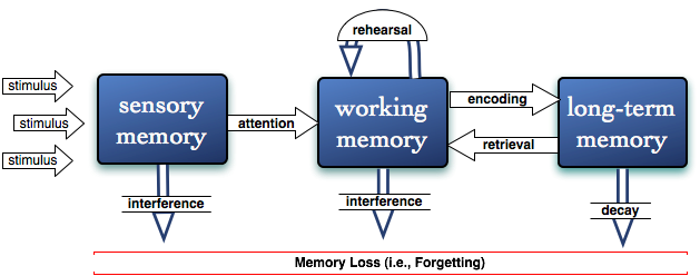 Information Processing Model for microlearning