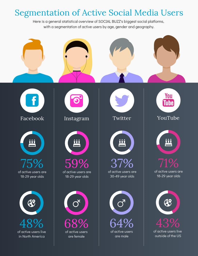 Demographic Infographic Social Media Market Segment Template