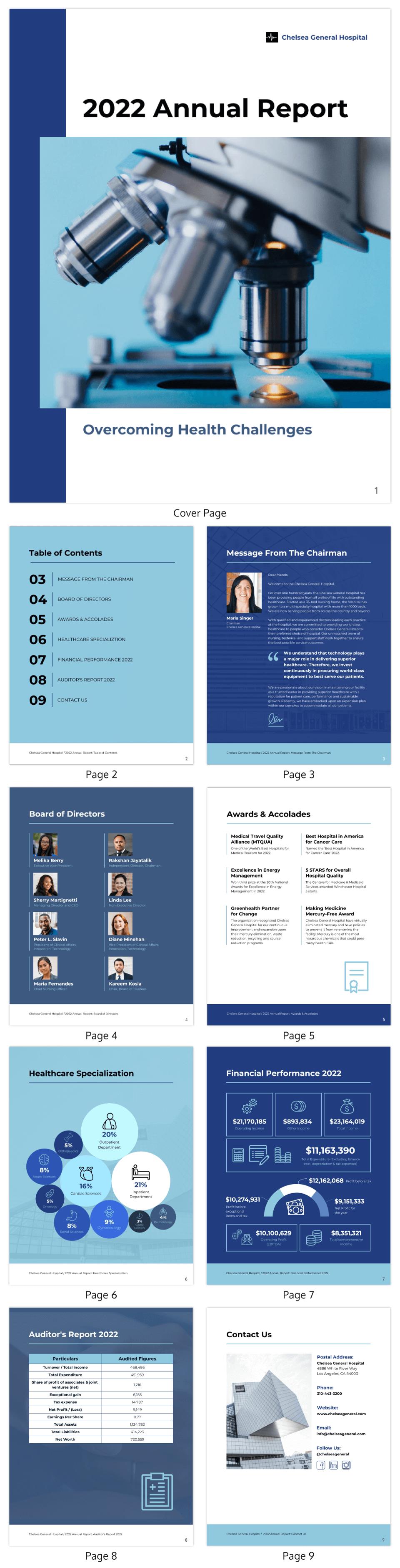 Healthcare Data Visualization Professional Healthcare Annual Report