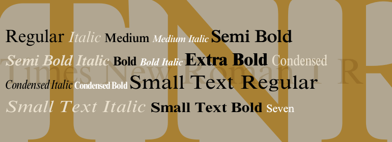 Infographic fonts times new roman