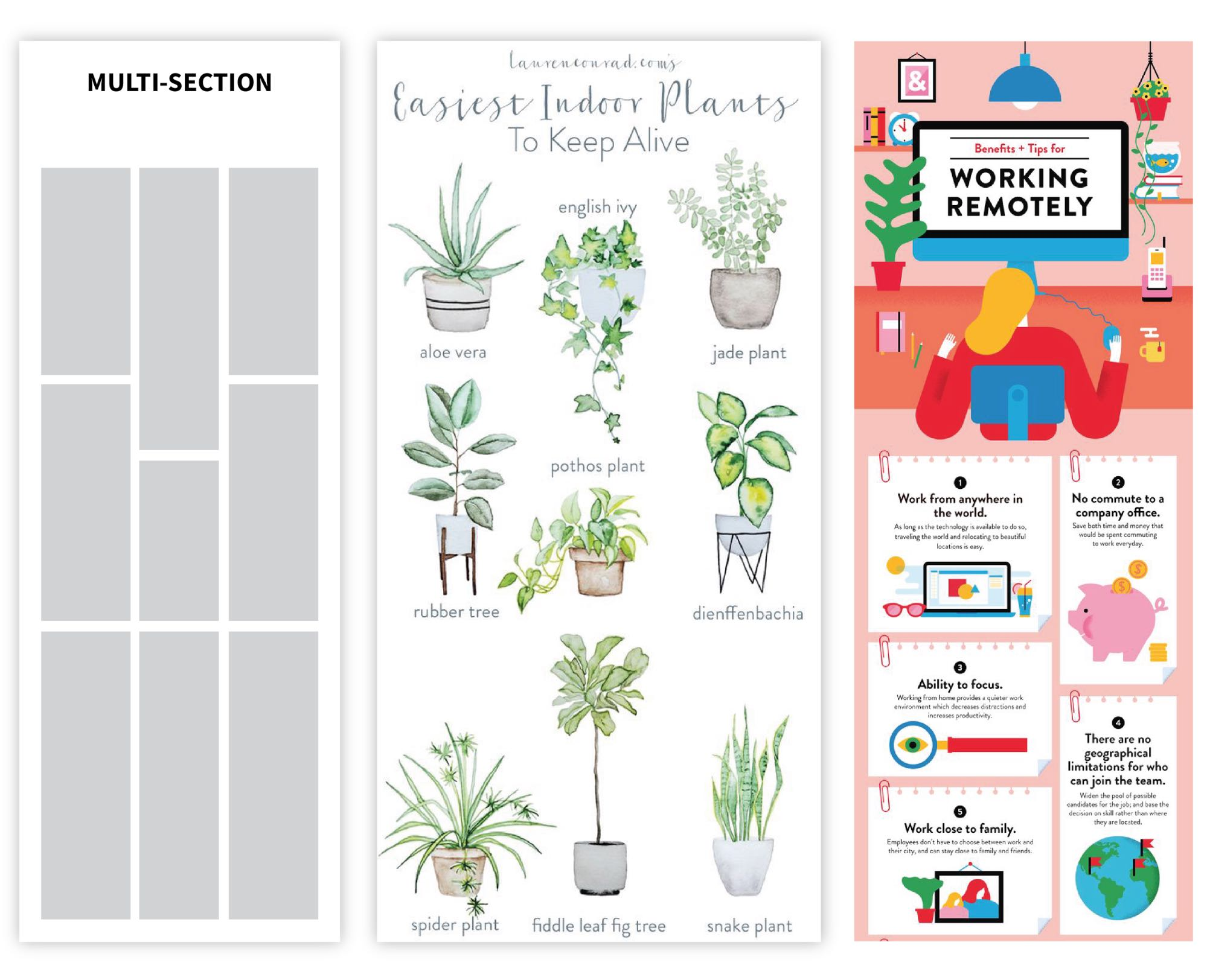 Infographic layout multi section layout