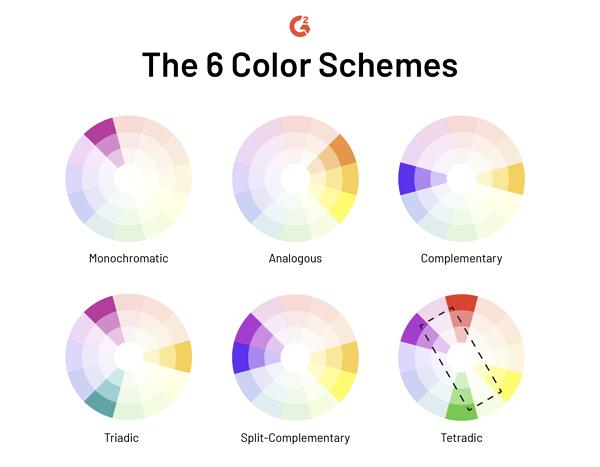 Social media infographic 6 color schemes