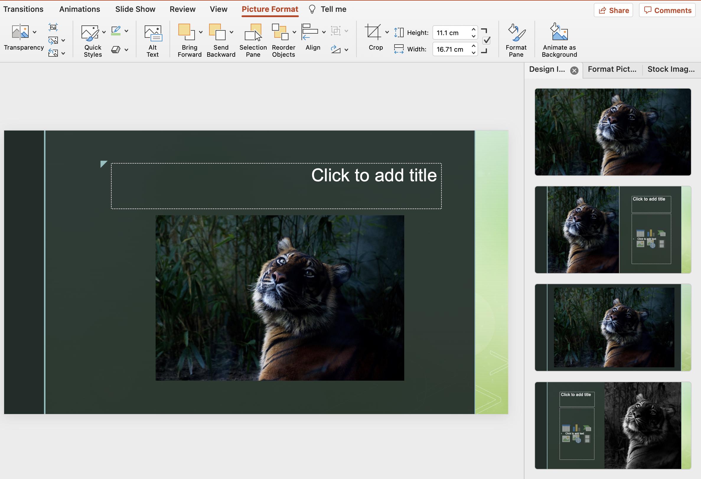 PowerPoint vs Venngage PowerPoint Photos