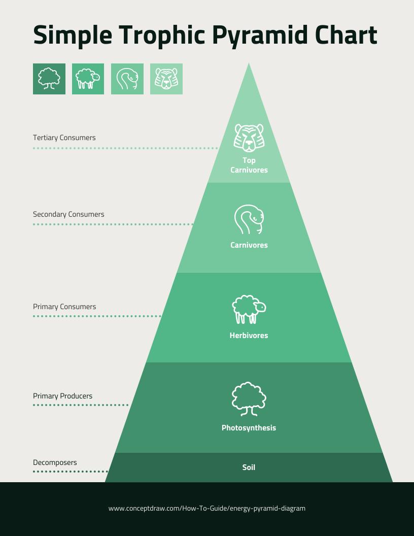 grafico de piramide