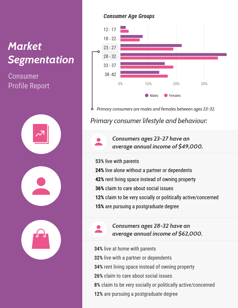 Strategy Infographic Market Segmentation Report Template