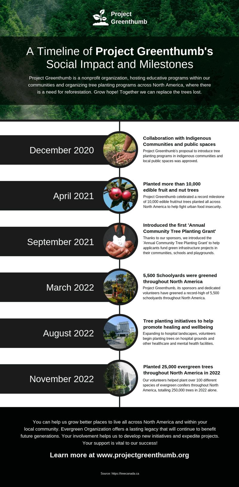 Environmental Nonprofit Social Impact Timeline Template