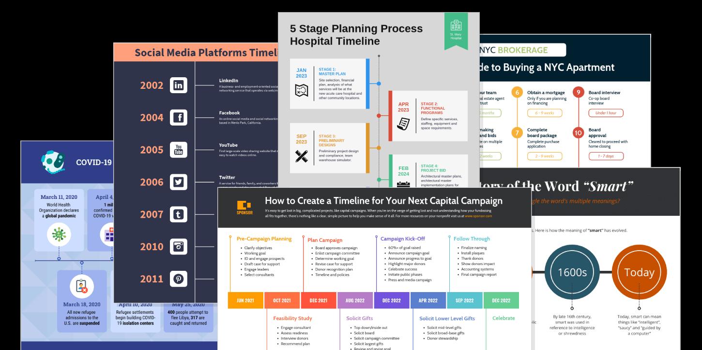 Timeline Maker Make A Timeline Infographic Venngage