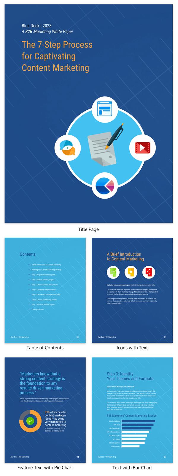 B2B Content Marketing White Paper Template