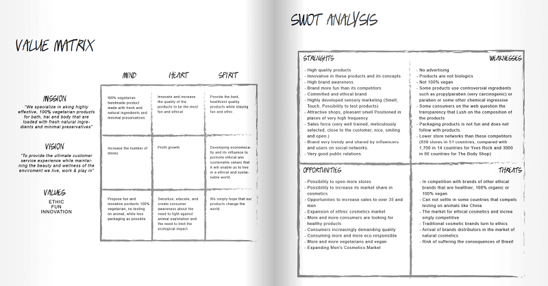 Lush marketing plan example