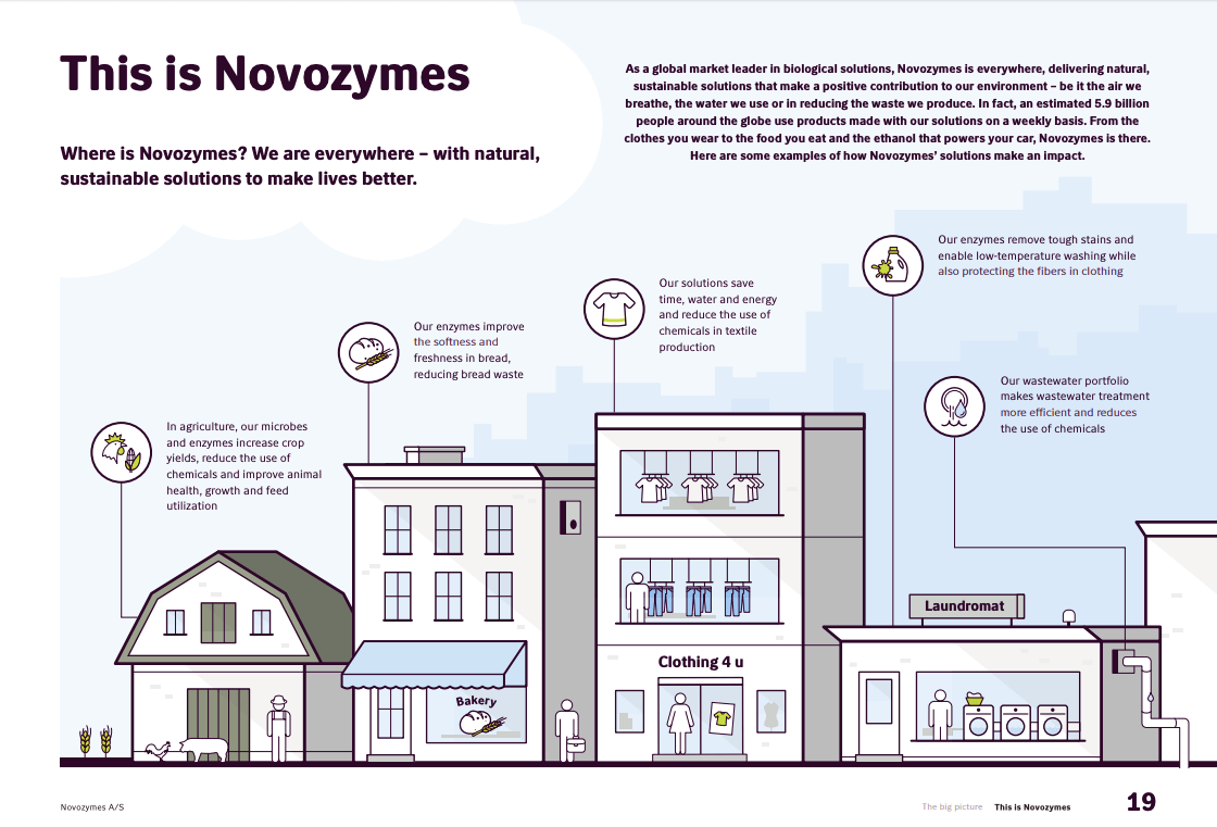 Novozymes-Annual-Report-Example-